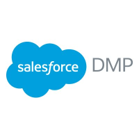 Salesforce DMP