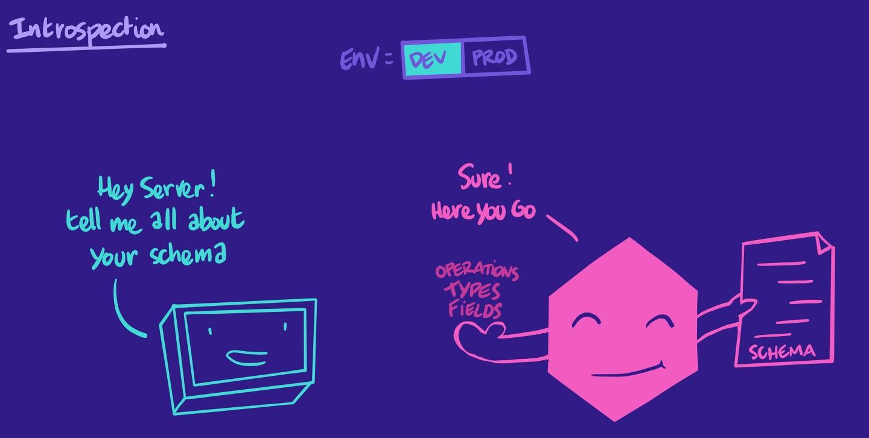Illustration of introspection in development environments
