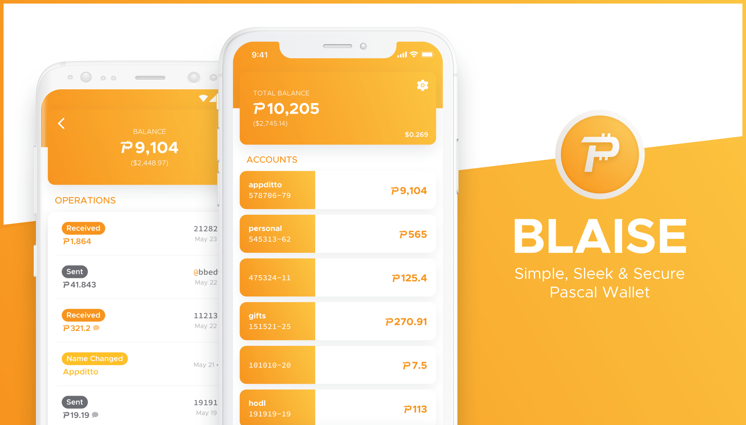 Meet with Blaise: Simple, Sleek & Secure Pascal Wallet