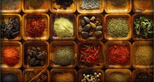 The traditional goan food recipes