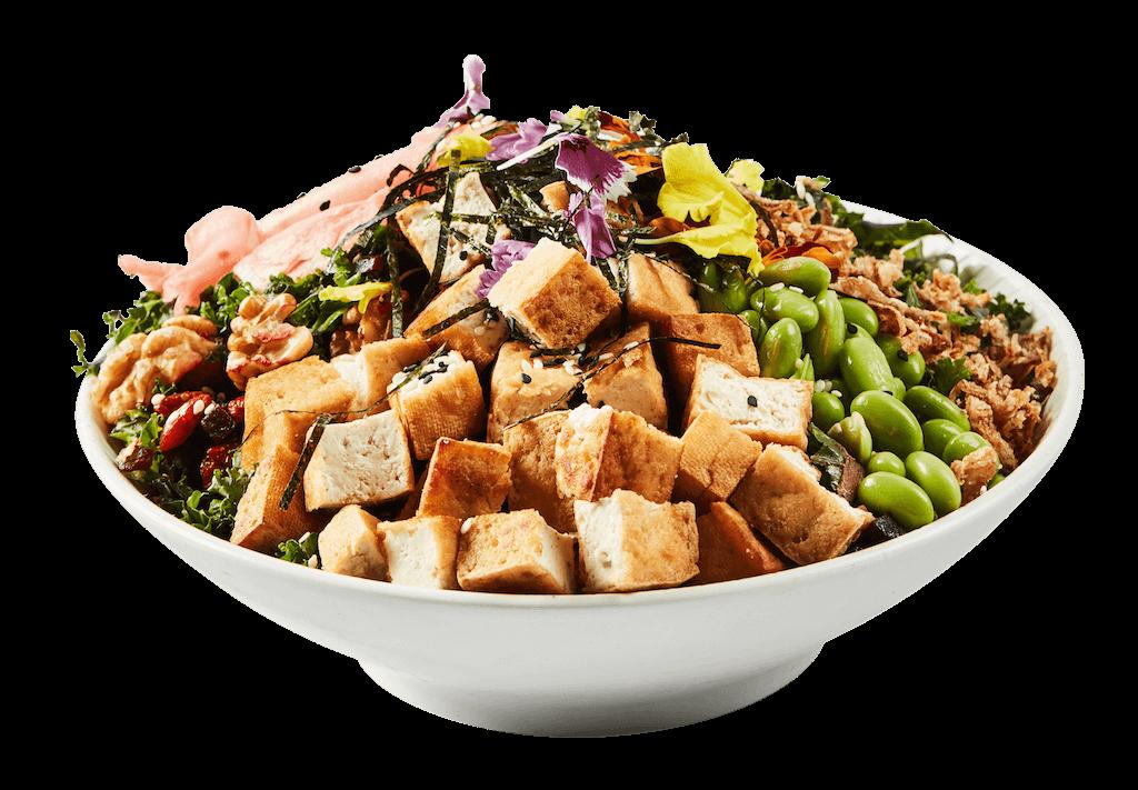 Tofu Teri San (V) (VG) (GF)