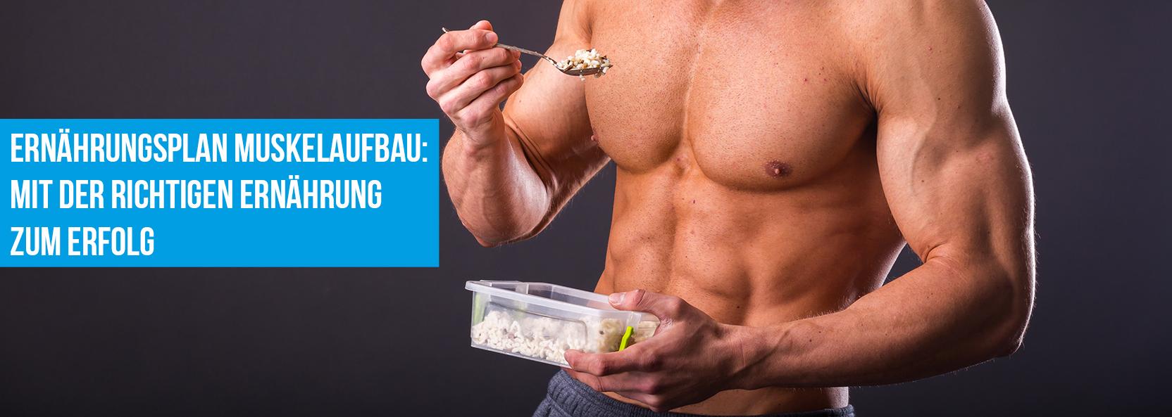dann liegt es wahrscheinlich an der ernhrung und es wird zeit ber einen optimierten muskelaufbau ernhrungsplan nachzudenken - Ernahrungsplan Muskelaufbau Beispiel