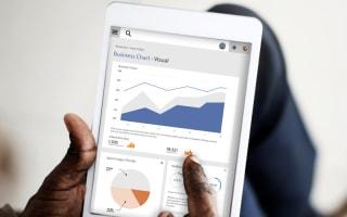 Analytics & Data Visualization Solutions