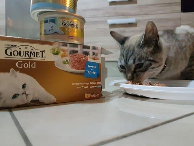 Gourmet Gold : deliziosi tortini con salsa per l'amico gatto