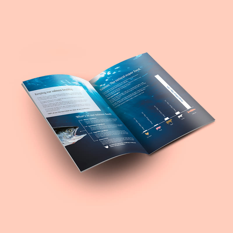APR-TASSAL-Leaflet-2