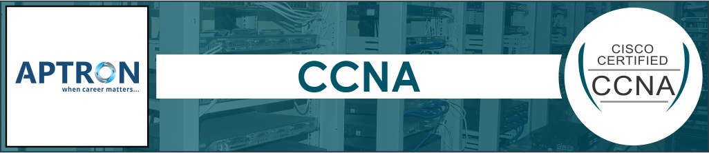 Best 6 Months Industrial Training in ccna