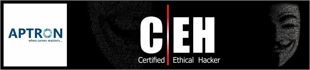 Best 6 Months Industrial Training in ceh