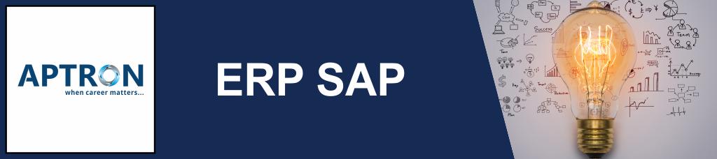 Best 6 Months Industrial Training in erp-sap