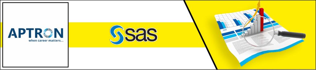 Best 6 Months Industrial Training in sas
