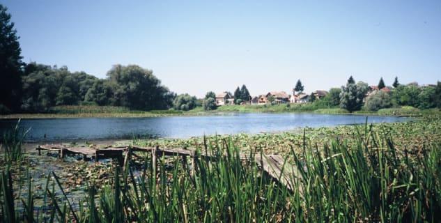 Lonjsko polje - https://www.flickr.com/photos/iucnweb/6788529528/in/photolist-bkSZjy-4Kwuvk