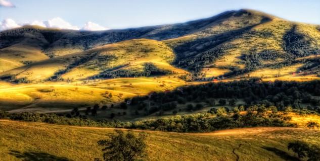 tornik - https://www.flickr.com/photos/sasjamilenkovic/6095722902