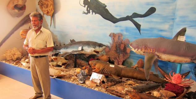 Muzeum mušlí -