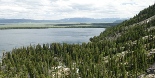 Jenny Lake -