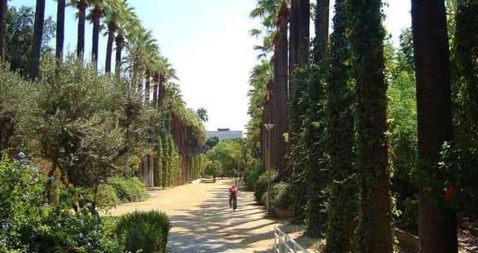 Obecní zahrady - http://commons.wikimedia.org/wiki/File:Nicosia_historical_Municipal_gardens_in_Republic_of_Cyprus.jpg