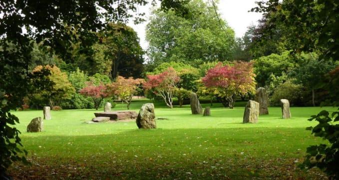 Buteho park v Cardiff - http://www.geograph.org.uk/photo/3147167