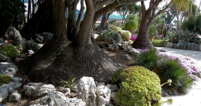 Exotické zahrady a jeskyně - https://www.flickr.com/photos/22084572@N07/8289817926