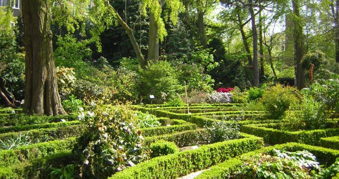 Botanické zahrady - https://www.flickr.com/photos/ruth1066/501921246/
