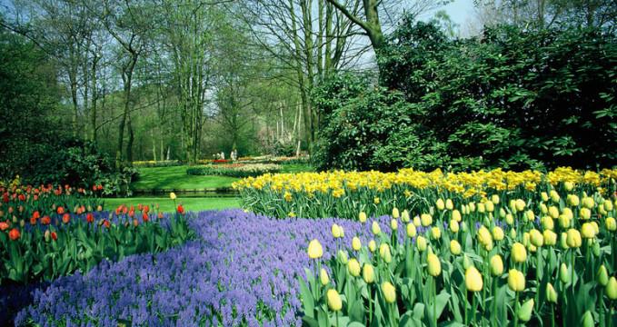 Keukenhof Gardens - https://www.flickr.com/photos/robertlylebolton/8072687349/