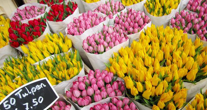 Květinový trh - https://www.flickr.com/photos/travelationship/13368979975/