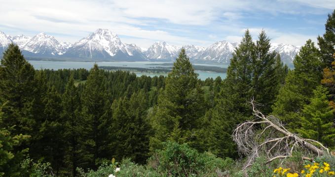 Grand Teton -