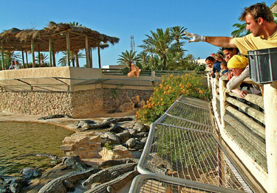 Park Djerba Explore - http://www.djerbaexplore.com/