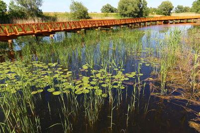 Kopačevská bažina - https://commons.wikimedia.org/wiki/File:Kopa%C4%8Dki_Rit_Nature_Reserve_near_Osijek,_Croatia.JPG