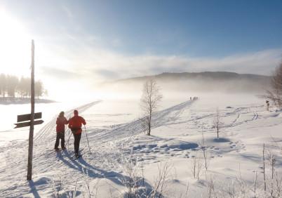 Nordmarka - https://www.flickr.com/photos/erlingba/5419084563/