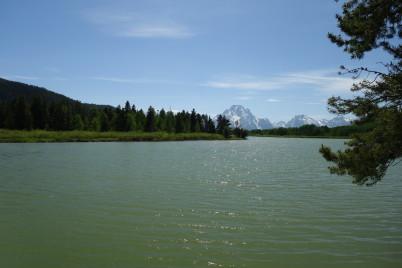 Oxbow Bend s Mt. Moran v pozadí -