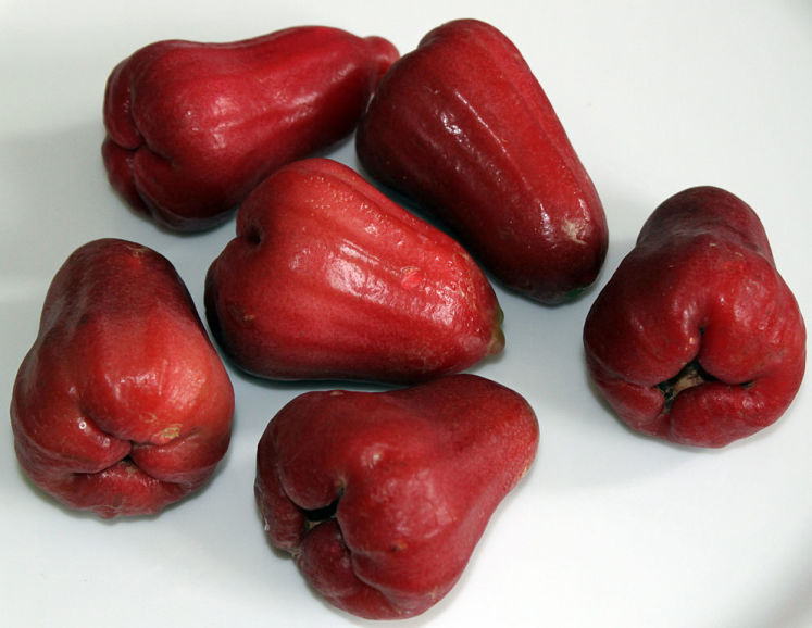 Rose apples neboli také nazývané wax apples / java apples