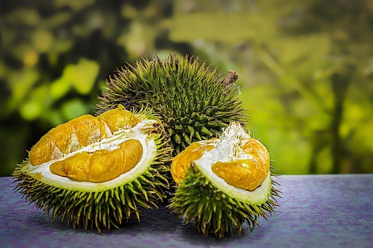 Dužina světoznámého durianu - krále ovoce