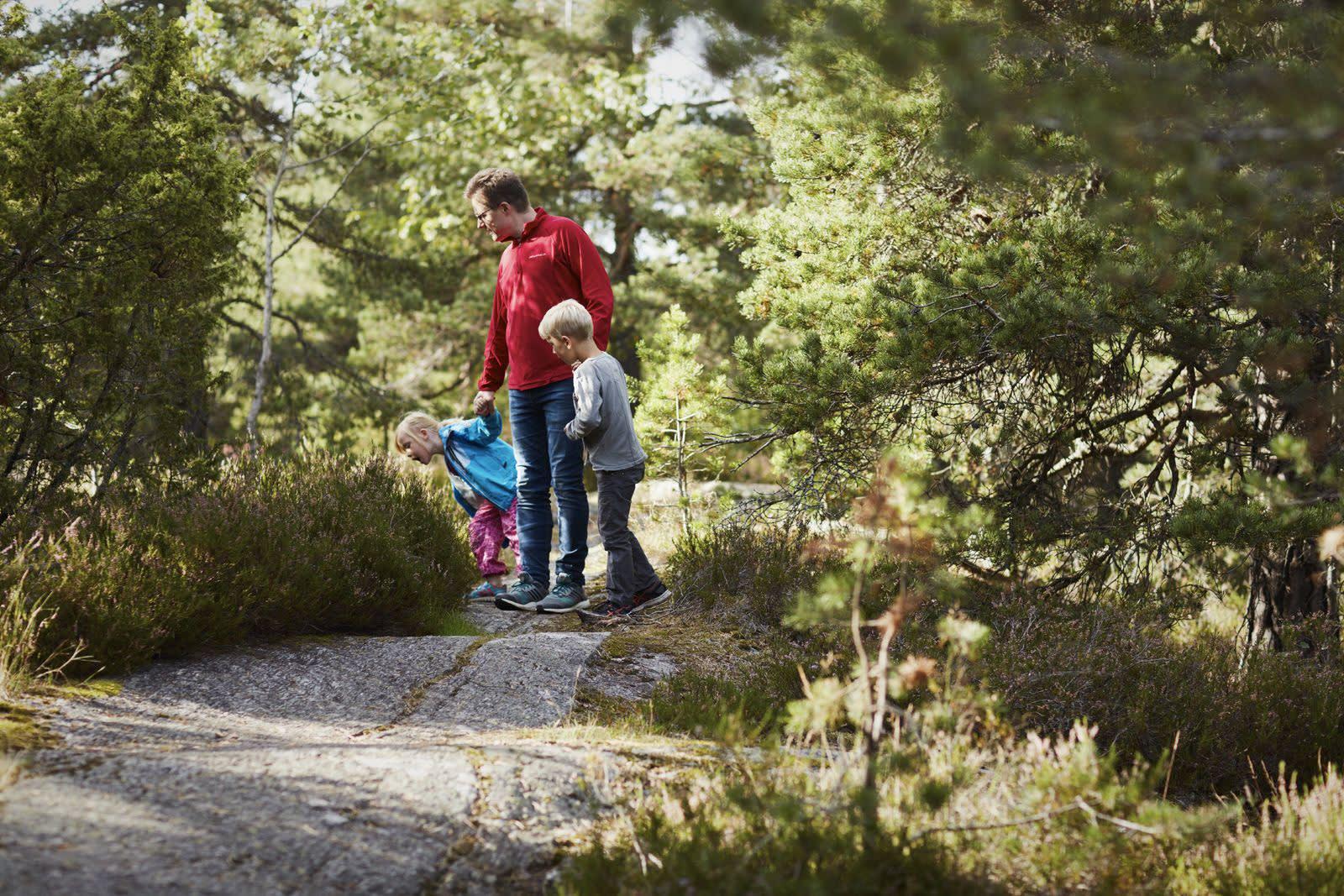 En far og hans to barn går tur i skogen, de har stoppet opp for å studere noe. Foto: Øivind Haug