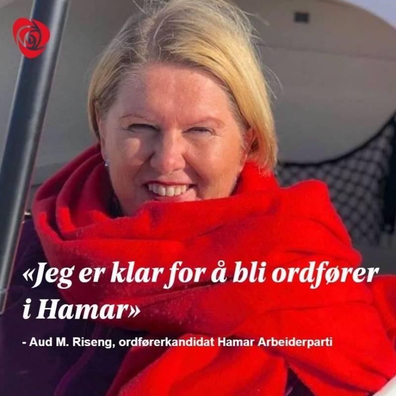 Aud M Riseng, ordførerkandidat