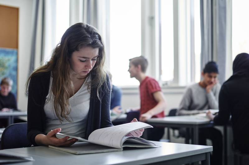 Elev som leser
