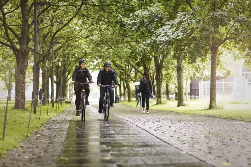 To syklister sykler gjennom en allé i regnet. Foto: Øivind Haug