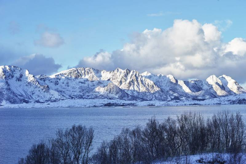 Landskapsbilde av blå himmel og snødekte fjell, hav og trær i forgrunnen. Foto: Øivind Haug