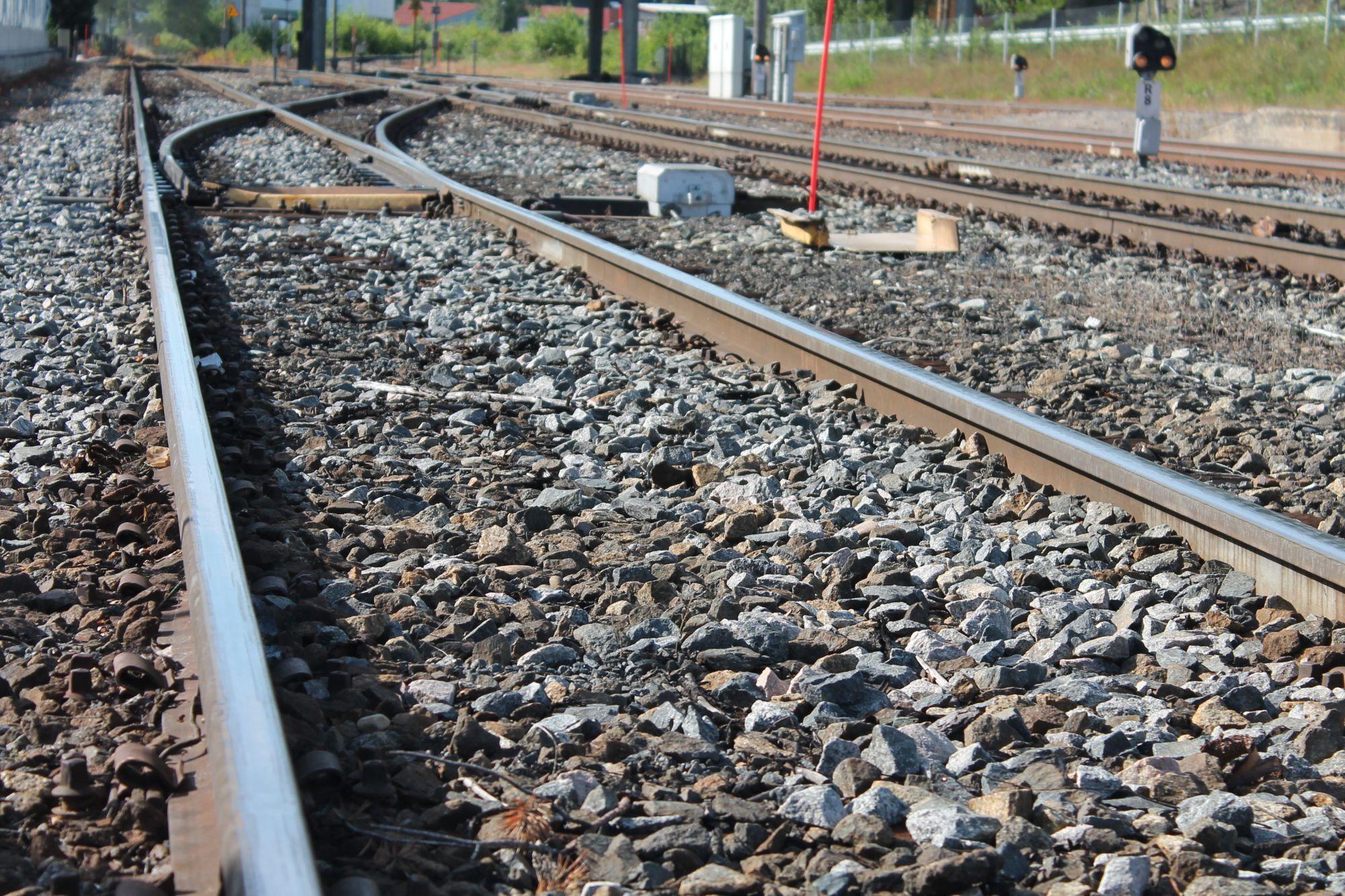 Fylkesrådet i Hedmark vil ha flere togavganger på både Rørosbanen og Dovrebanen, og vil på sikt ha persontrafikken tilbake på Solørbanen.
