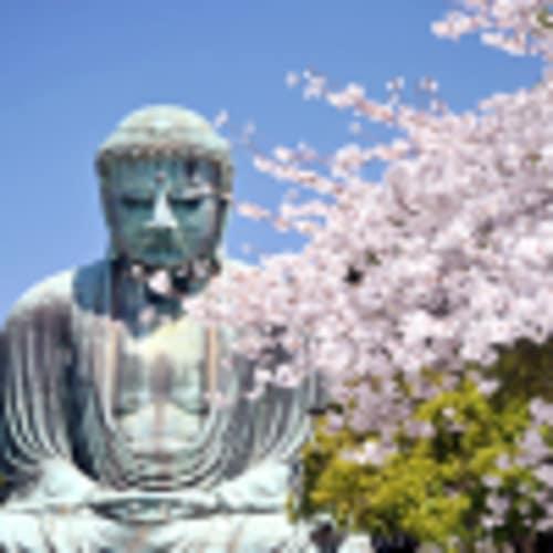 """Cours de Do-In """"yoga japonais"""""""