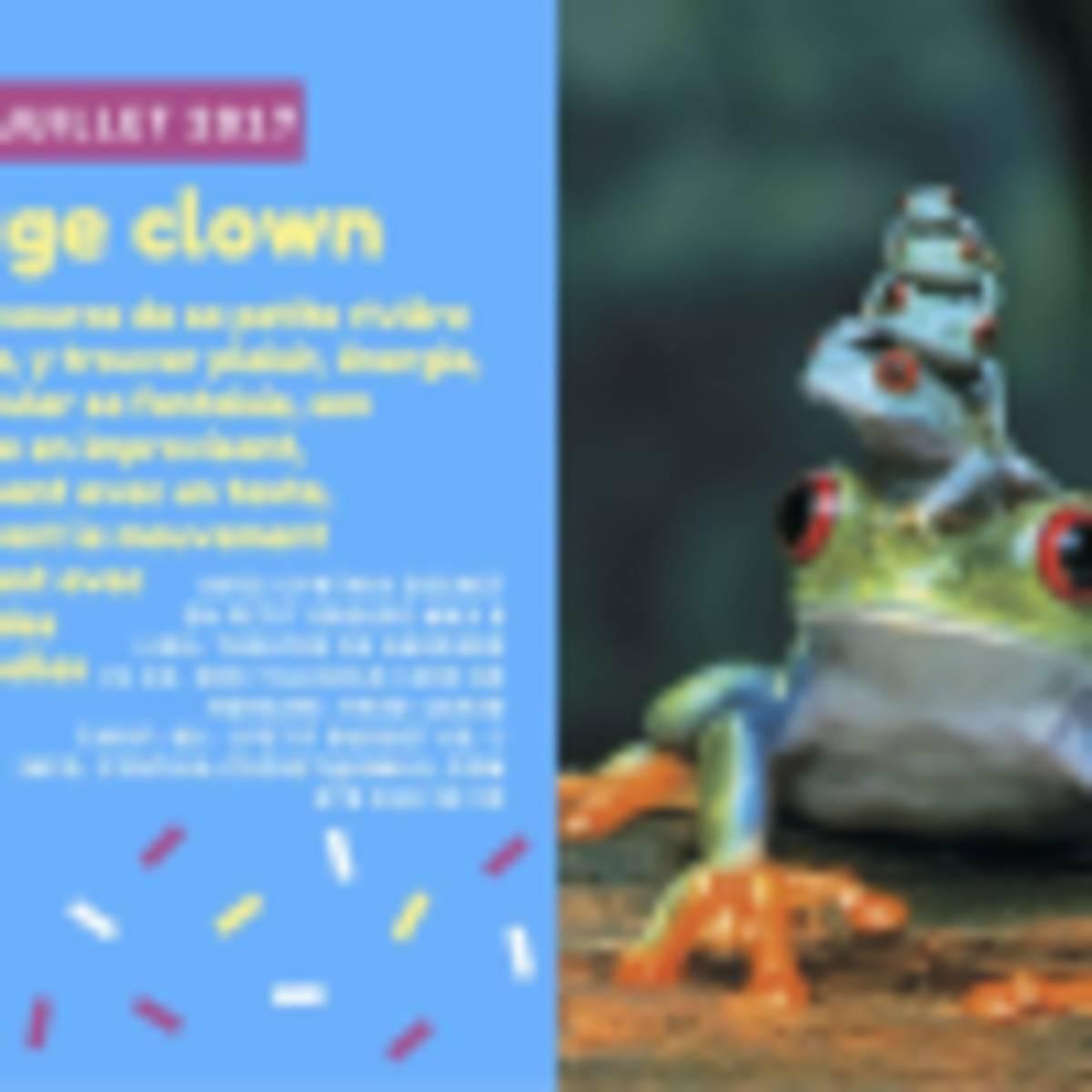 Stage Clown - Cynthia Cochet