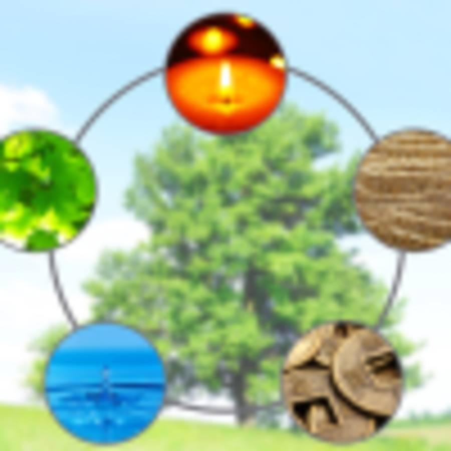 Feng Shui traditionnel pour révéler le potentiel naturel de votre lieu de vie - Centre Prévention Santé Colombier