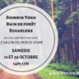 Bain de forêt - Shinrin Yoku avec Audrey Rossier