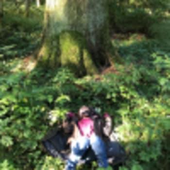 Initiation au Bain de Forêt - Upgreen