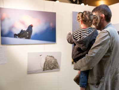 ArboLife-events-FestivalSalamandre-Expositions-NicolasdeNisco-1038x692