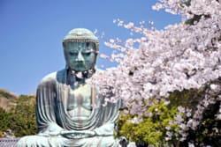 ArboLife-events-krivine-cabinet-shiatsu-auvernier-daibutsu1
