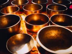 ArboLife-events-aline-burgat-meditation-bol
