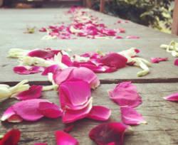 ArboLife-events-laurence-brillant-au-coeur-de-la-relation-la-femme-cyclique