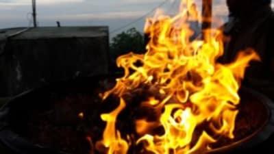 ArboLife-events-aline-burgat-meditation-feu-en-nature-avec-les-bols-planetaires