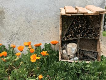 ArboLife-events-Atelier-EcoCrea-Insectes-au-jardin