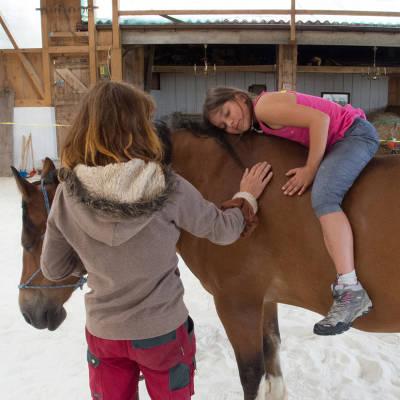 ArboLife-events-association-liane-vivre-la-campagne-en-harmonie-avec-les-chevaux