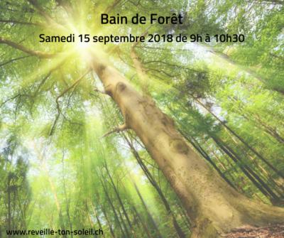 ArboLife-events-reveille-ton-soleil-bain-de-foret