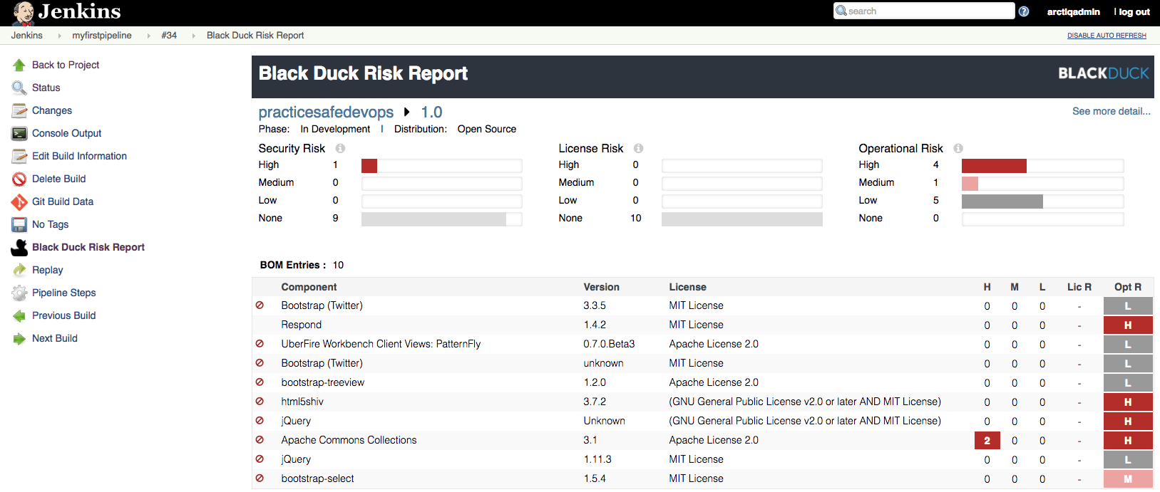 risk report